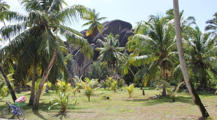 Reporter Maaike werd verliefd op de gigantische rotsen bij L'Union Estate op La Digue op de Seychellen