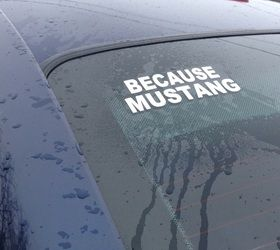 Your number one spot for Mustang Clothing & gifts! - Mustang Humor