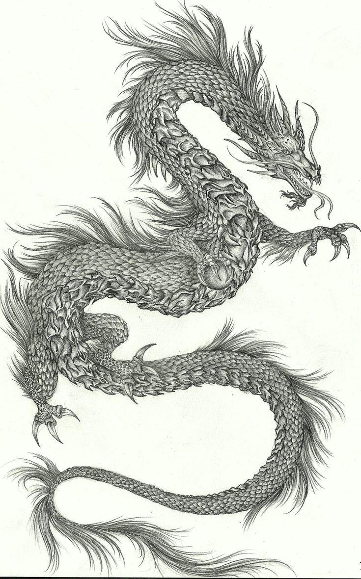 Black Dragon  Google Search