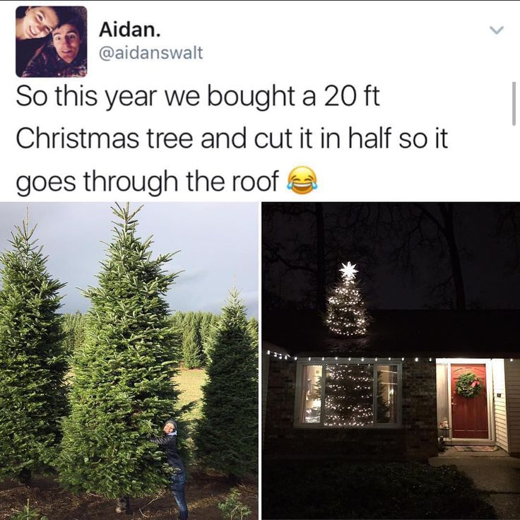 Lol we get 14ft Christmas trees and they don't have to go through the roof, they fit in our house!