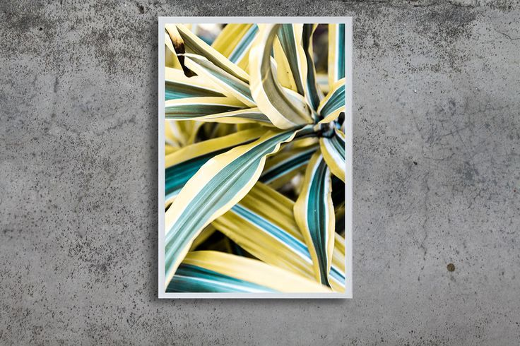 Garden Colour Burst by PaigesEarthyElements on Etsy