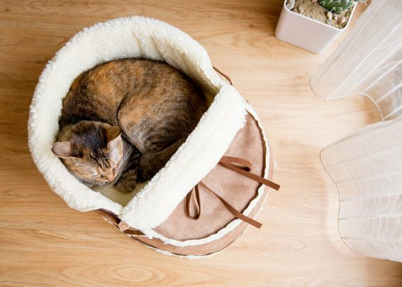 Unique Designer Pet Bed Medium for Cat Small Dog by NappingJoJo