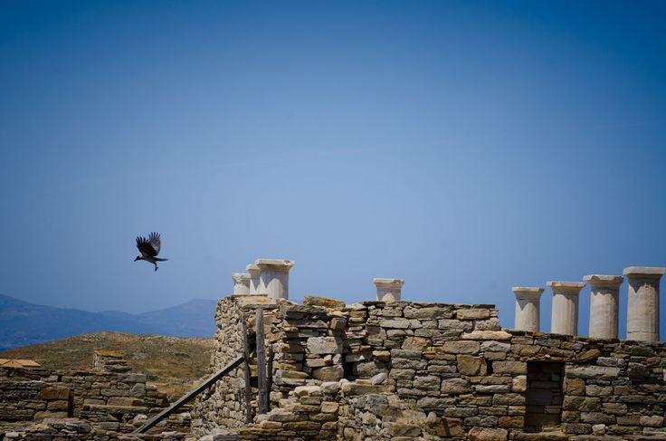 Delos | Through the lens of photographer Yorgos Banillas