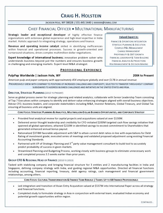 chief financial officer resume unique executive resume