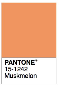 1000 images about color names pantone on pinterest persian baroque and pantone color. Black Bedroom Furniture Sets. Home Design Ideas
