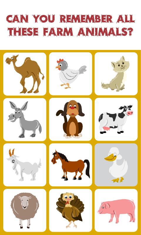 Farm Animals Match: Memory Game: is a concentration-style educational memory game for  kids to learn about different kinds of Farm Animals. Kids of all ages and grades can enjoy this  Farm Animals memory game along with their parents, grandparents as it's going to activate some  areas of their brain responsible for memory acquisition which therefore can help their memory  improve.