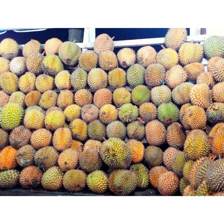 Ucok Durian Medan, SumatraUtara
