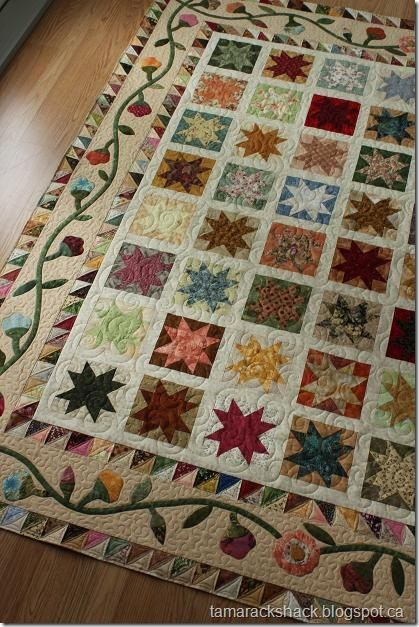 I love the layers of interest in this quilt. Even the borders are pieced...