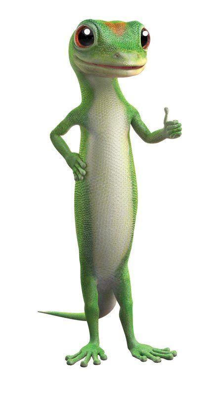 Geico Home Insurance Quote >> This little guy is just tooooo CUTE. The Geico Insurance gecko | Things That Make Me Smile ...