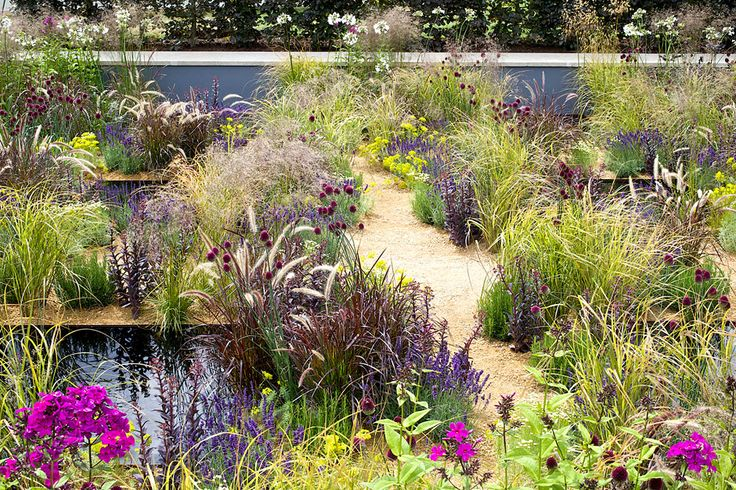 The One Show Garden at the 2014 RHS Hampton Court Palace Flower Show / RHS Gardening