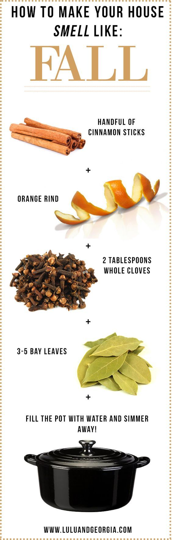 How To Make Your House Smell Like FALL! ~ Just add cinnamon sticks, orange rind, whole cloves, and bay leaves, cover with water, and simmer on the stove for a natural autumn scent.