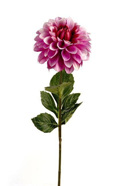 #dalia #flower #lilac #decoration for #home #homeliving by #ZAROS www.zarossa.gr