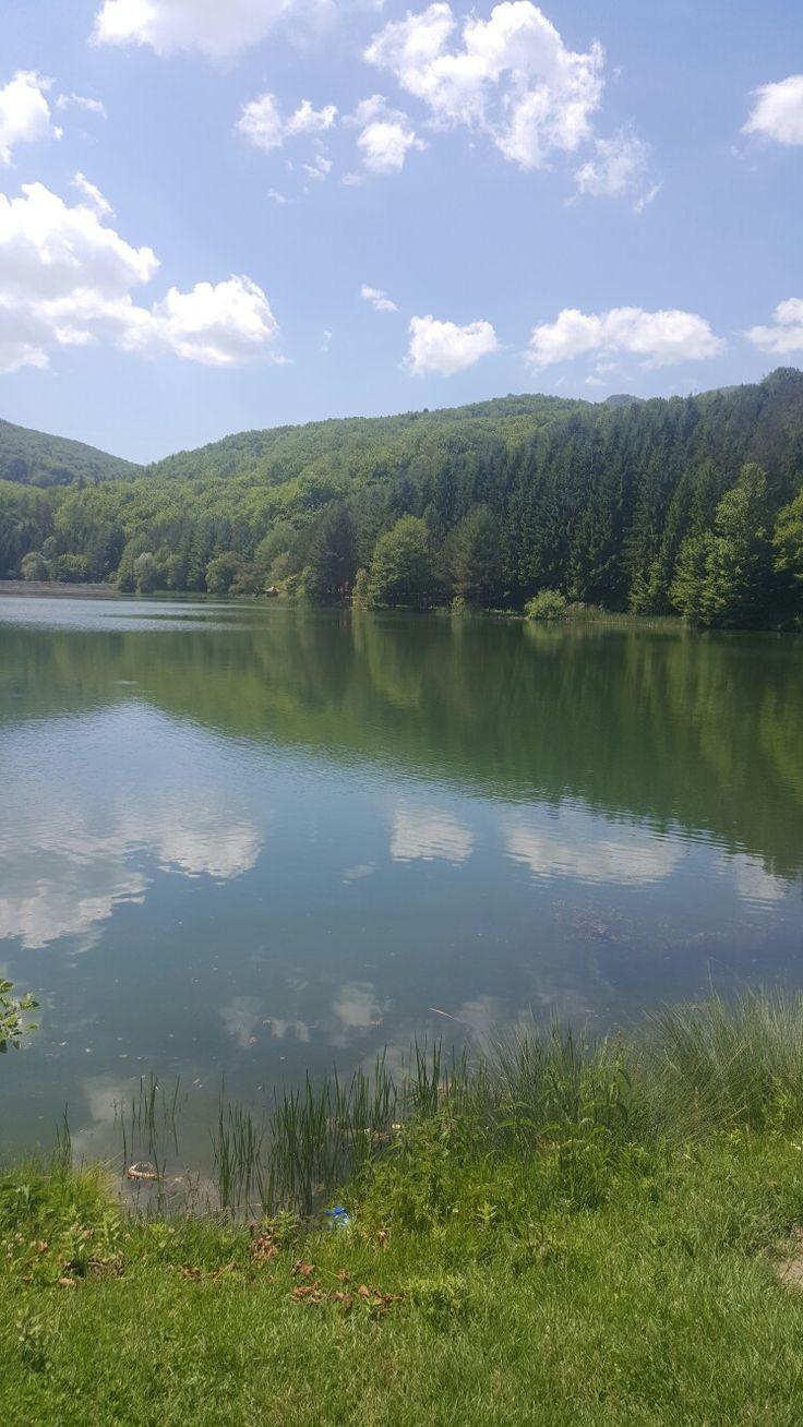 Lacul Minis