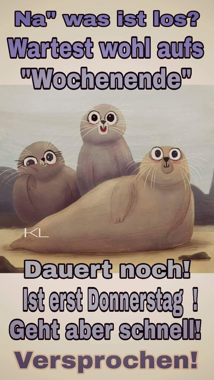 Donnerstag Bilder Lustig Comedy Comics Morning Humor Humor