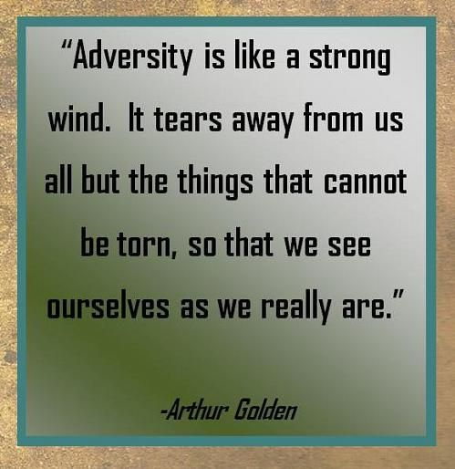 Inspirational Quotes For Overcoming Obstacles: 25+ Best Ideas About Overcoming Adversity On Pinterest