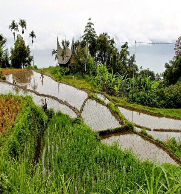 Lake Maninjau, West Sumatra ,Indonesia - Travel Pedia