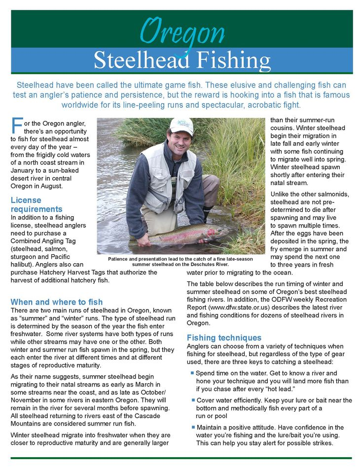 Steelhead fishing, by the Oregon Department of Fish and