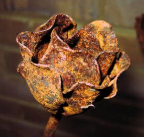 a rusty metal rose -- great name for a pub -- the rusty rose. Must remember that one in case.......