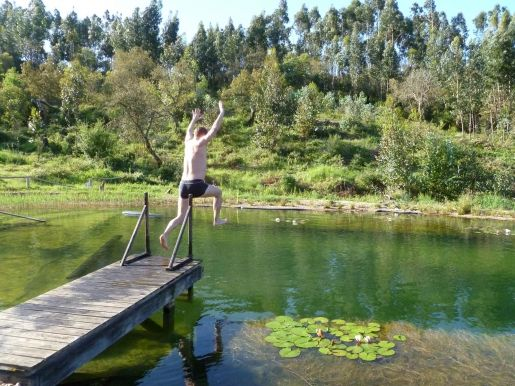 10 Best Hotels With Natural Swimming Pools Images On Pinterest Natural Pools Natural Swimming