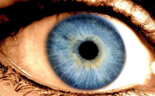 Blue Eyes Originated 10,000 Years Ago in the Black Sea Region | TruthTheory