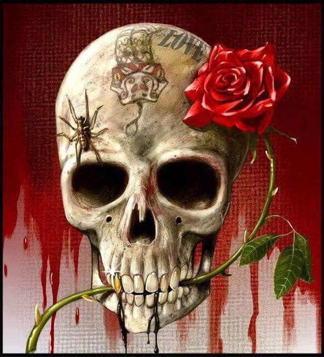 черепа картинки с розами установки ограждения достаточно