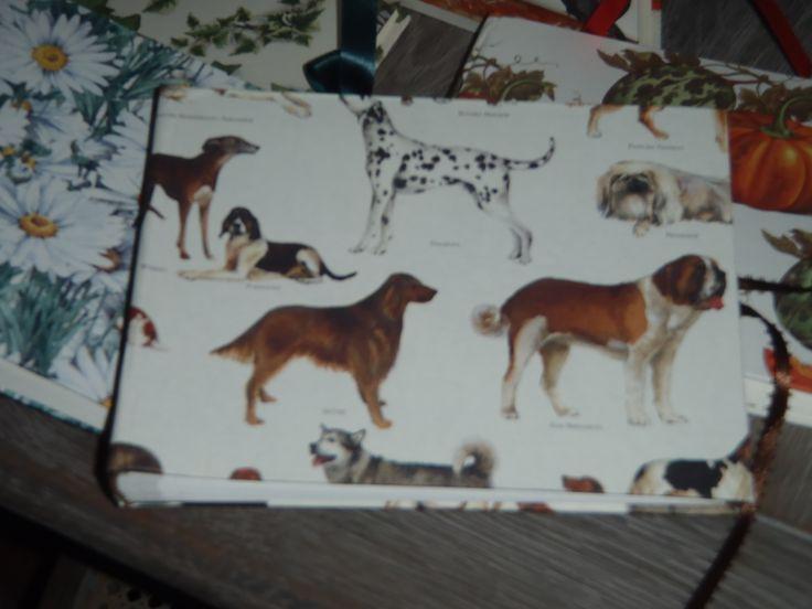 album carta cani