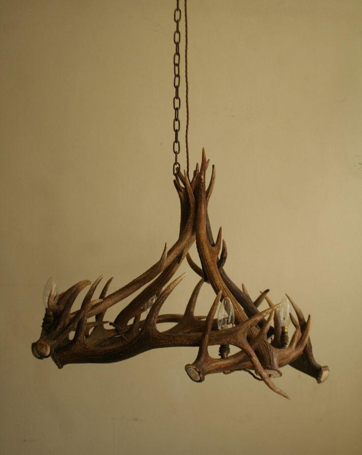 Mejores 68 imgenes de antler chandelier design en pinterest antler chandeliers aloadofball Images