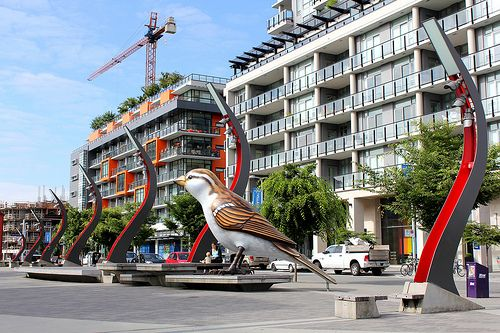 Myfanwy MacLeod's The Birds at the Southeast False Creek Olympic Plaza in the Olympic Village Vancouver BC Canada