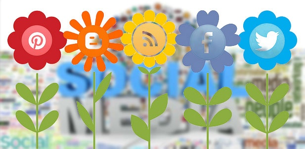 Definitely Social Media Can Increase Your Blog Growth! Blogging is always an essential part of any website or company. It keeps your customers in touch with