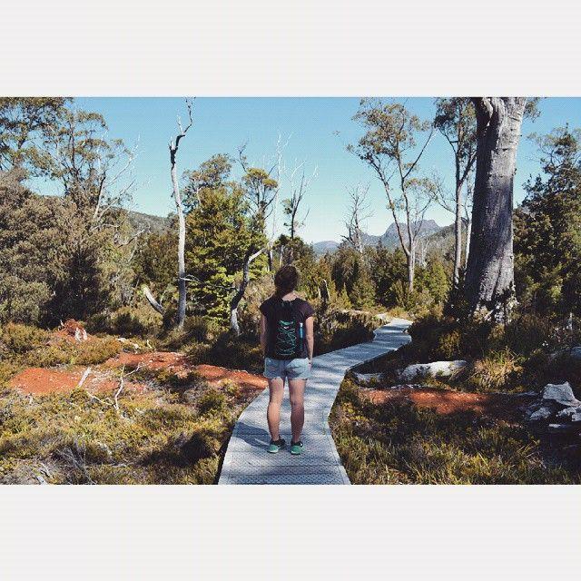 Walking in Cradle Mountain Lake St Clair National Park via http://buff.ly/1e4nEXD?utm_content=buffer3ecb3&utm_medium=social&utm_source=pinterest.com&utm_campaign=buffer #tasmania #walking