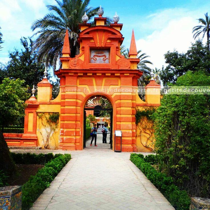 • Real Alcázar •  #seville#realalcazar#espagne#petitedecouverte#travel#spain  ♡ Encore plus de découvertes et de voyages sur www.petitedecouverte.fr