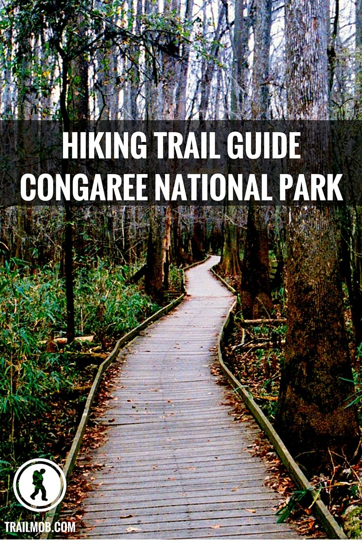 The best  trails in Congaree National Park in South Carolina.