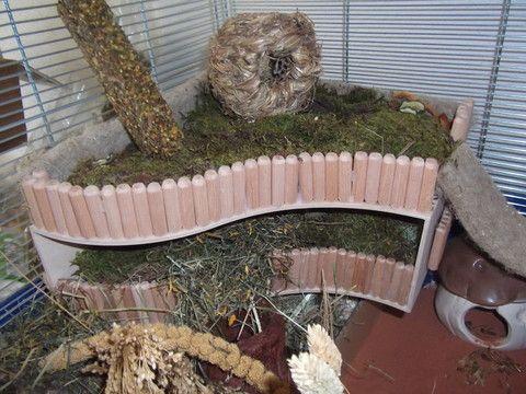die besten 25 hamster gehege ideen auf pinterest. Black Bedroom Furniture Sets. Home Design Ideas