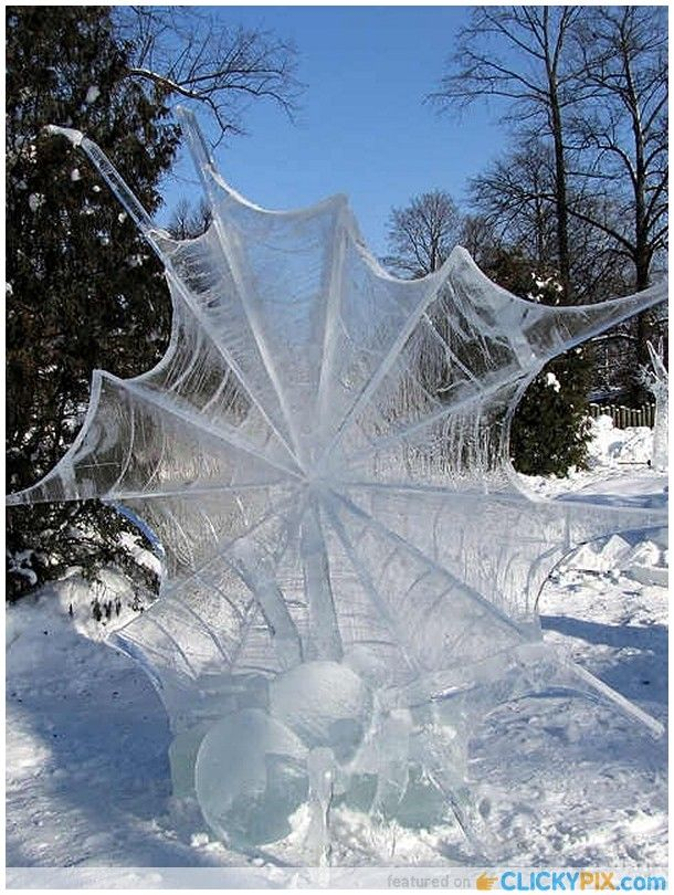 Ice-Sculpture - Spider with web