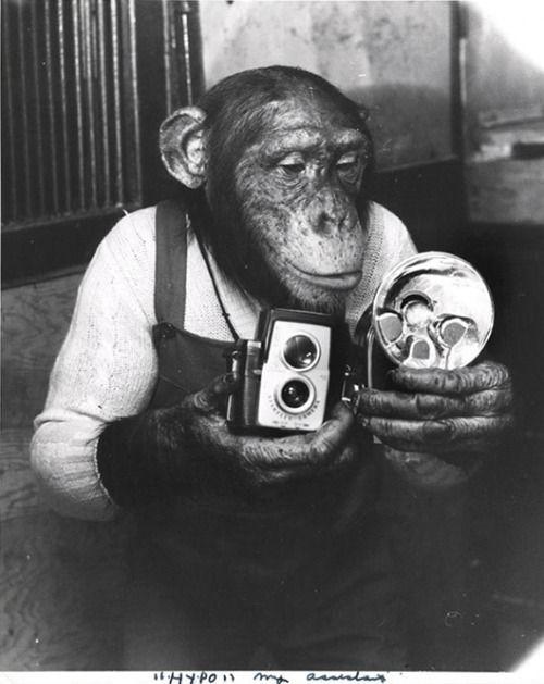 Weegee, 1952