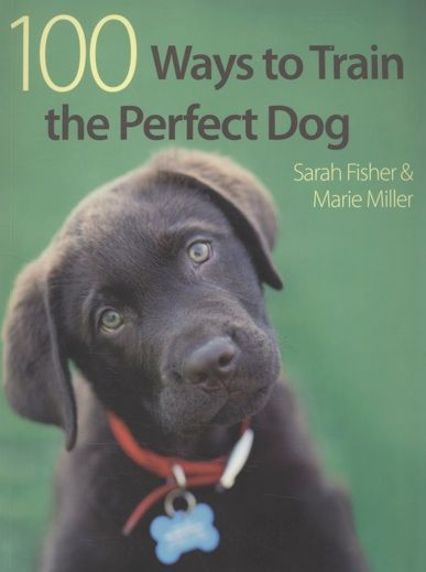 100 Ways To Train The Perfect Dog   by Sarah Fisher & Marie Miller.  Dog Training #dogtraining #sarahfisher #mariemiller