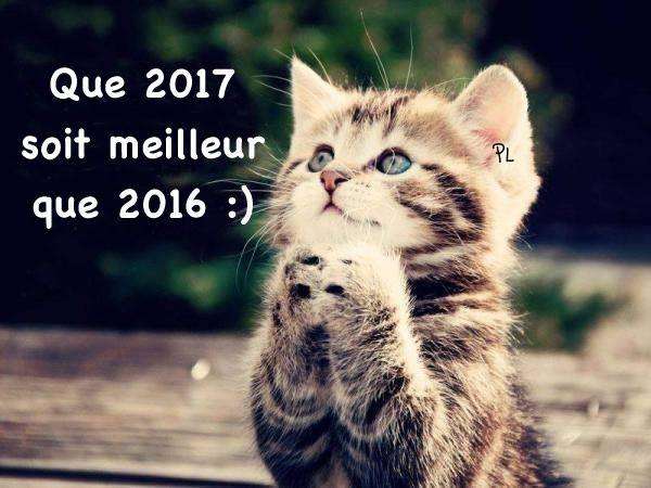 Que 2017 soit meilleur que 2016 :) #bonneannee bonne annee humour
