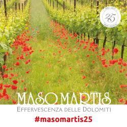 Per i suoi 25 anni, Maso Martis festeggia a stretto contatto con il territorio Trentino: degustazioni trentodoc e trekking nella natura. Programma su www.escursionintrentino.it  #slowtrek #trek #trentino #trekking #escursioni #camminare #walking #passeggiata #natura #nature #relax #estate #summer #campagna #vigna #wine #vino #trentodoc #masomartis #masomartis25 #degustazione #taste