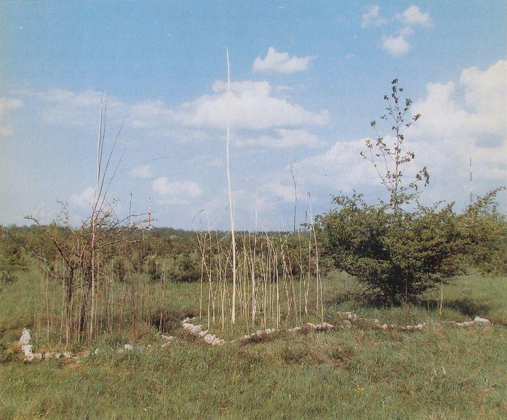 Geza Samu - Installation Experiment, 1982