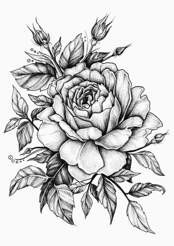 25 Wunderschöne Blumen zeichnen Ideen & Inspiration Helleres Handwerk, #schöner #herzigere #Zeichnung #Blumen #ideen #inspiration