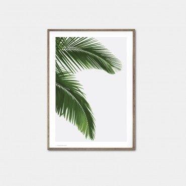 green, palm,