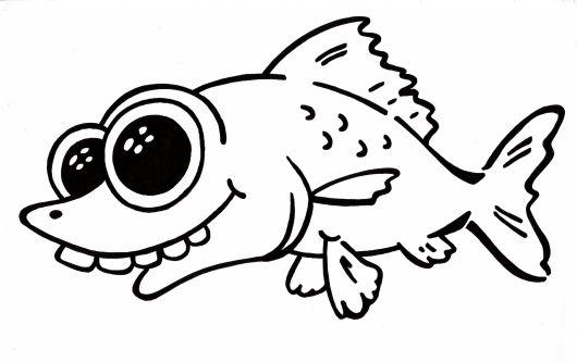 Prečo majú šťuky a pstruhy veľké oči a sumce malé?