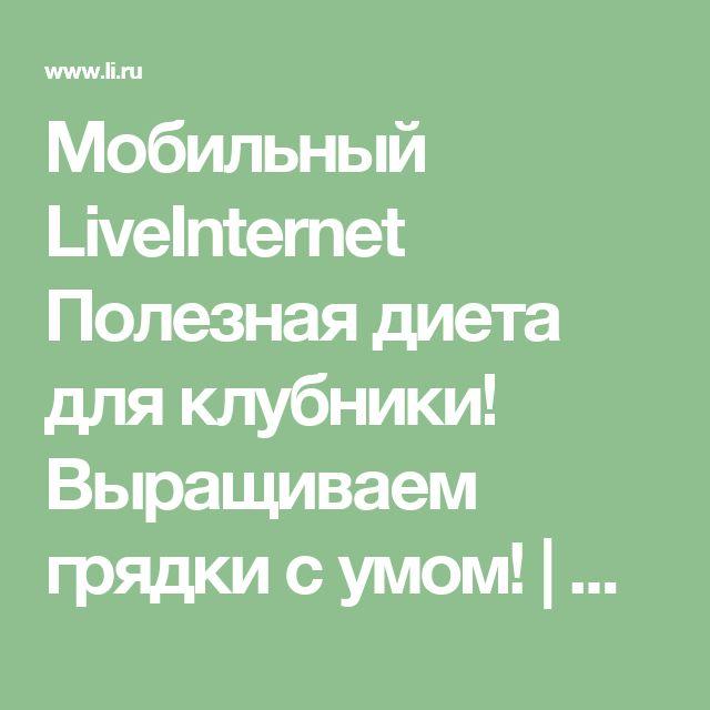 Мобильный LiveInternet Полезная диета для клубники! Выращиваем грядки с умом! | Алёнамир - Дневник огородника |
