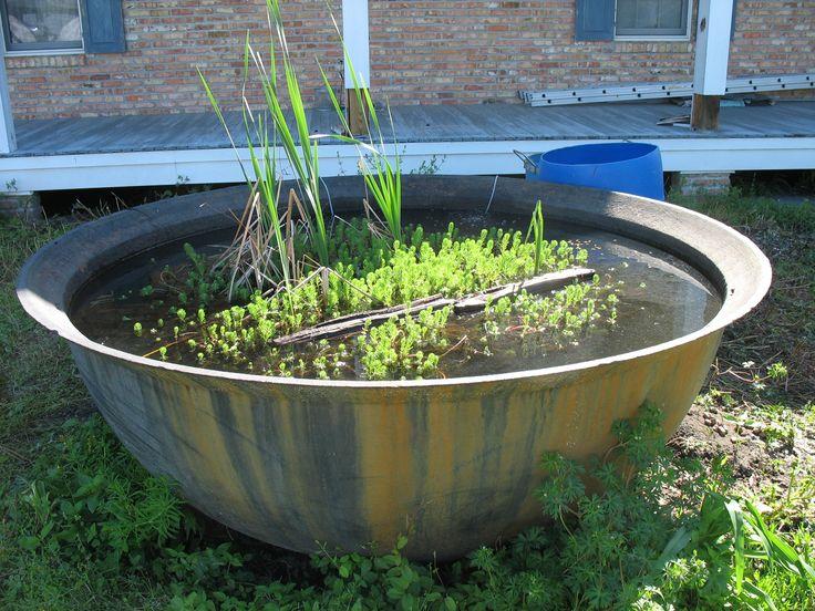 Best 25 Above Ground Pond Ideas On Pinterest Pond Decorations