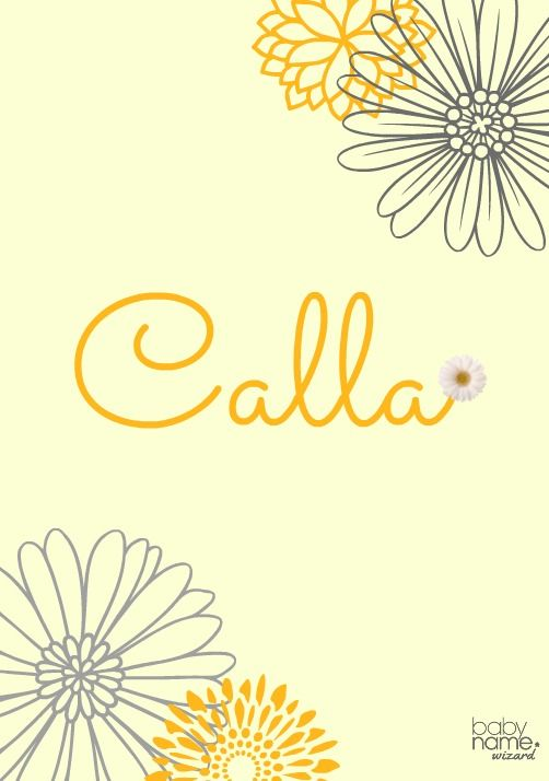 Calla: Meaning, origin, and popularity of the name. Coming from the Greek word for beauty, Calla is a natural for a girls' name. Its sound has similarities to Callie, Kayla, and even Isla or Bella. The elegant white flower with deep green leaves is a favorite for weddings and often plays a role in Easter celebrations, not to mention religious works of art. It was used a bit as a given name in the 1800s, and we think now is the perfect time for a Calla revival.