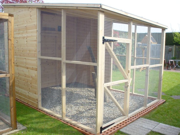 33 best images about Parrot aviary ideas on Pinterest