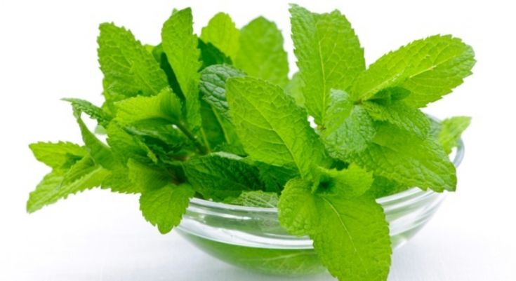 As we all know tulasi(holy basil) has got wide range of medicinal properties and one of the property is going to clear your stuffy blocked nose. Buy the tualsi drops or make it if you can  if you want to buy it one of the best product is IMC shri tulasi drops.Now take 1 liter of hot water and add 2 drops of tulasi oil in it and inhale the smell you get.within a minute your stuffy blocked nose will be cleared