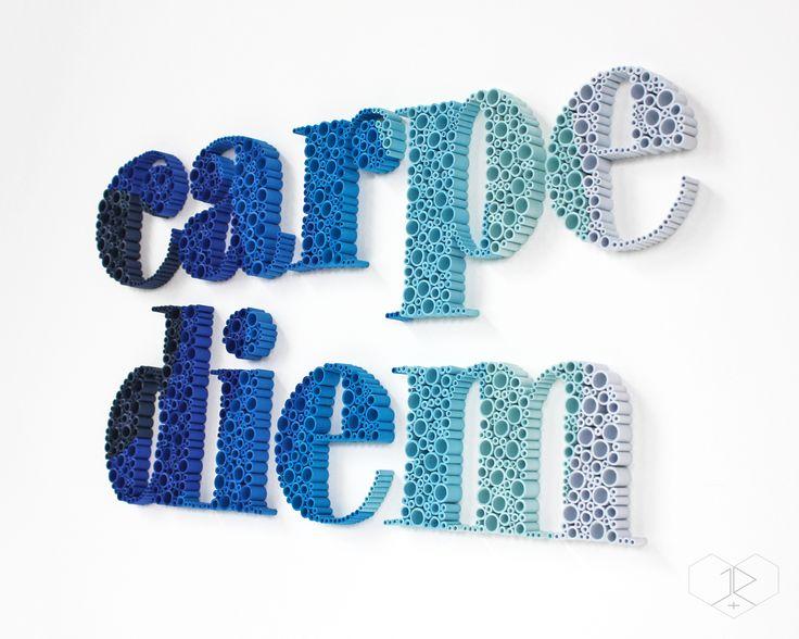 Popular CARPE DIEM angled view JUDiTH ROLFE