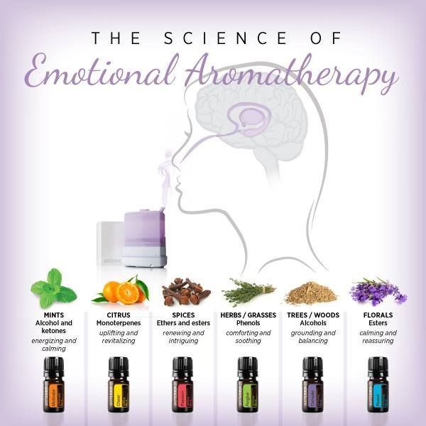 Have you ever wondered why a simple smell can provoke a strong emotion or trigger a specific memory?  The dōTERRA Emotional Aromatherapy Kit™ is the perfect example of this, and here's why it works so well:   Essential oils are simply a mixture of volatile aromatic compounds. These compounds are able to interact with the olfactory (smell) receptors in the nose. Our sense of smell can have a profound effect on our emotions,