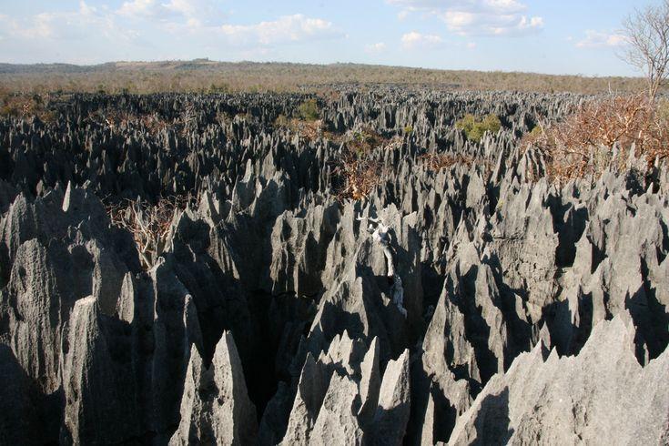 Felsnadelwald Tsingy de Bemaraha, Madagaskar (CC BY-SA 2.0) Marco Zanferrari/Flickr #Inspiration #Weltenbau #Worldbuilding